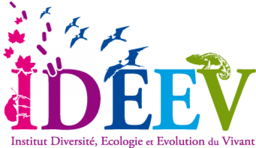 logo de l'IDEEV