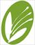 Institute of Botany CAS logo