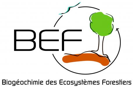Biogeochemistry of Forest ecosystem Unit